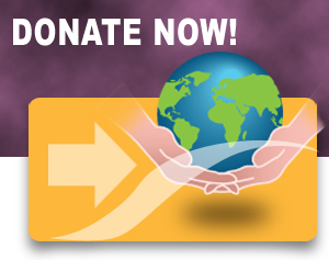 Donate Now graphic